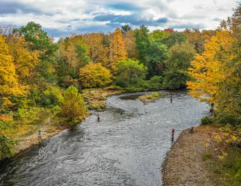 fall 2018 drone salmon river fishing colors.jpg