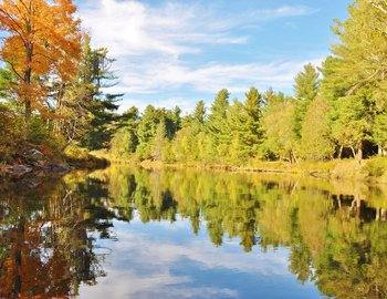 oswegatchie river lot 5 lot 4 lot 3 fall views of shore