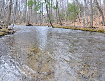 pekin brook full big edit west