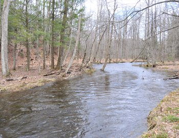 spring peking brook east